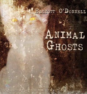 Animal-Ghosts