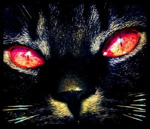 Interpretación Demon Cat