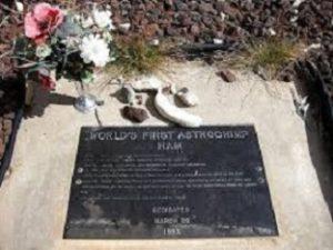 Ham memorial.