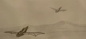 Dibujo 1.